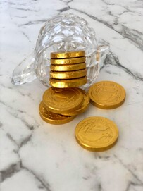 Gold Foiled NZ Coins